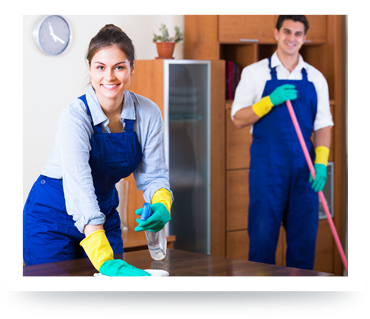 Professional Cleaners Cleaning and Dusting